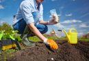 Garten- und Landschaftsgestaltung mit einem Architekten